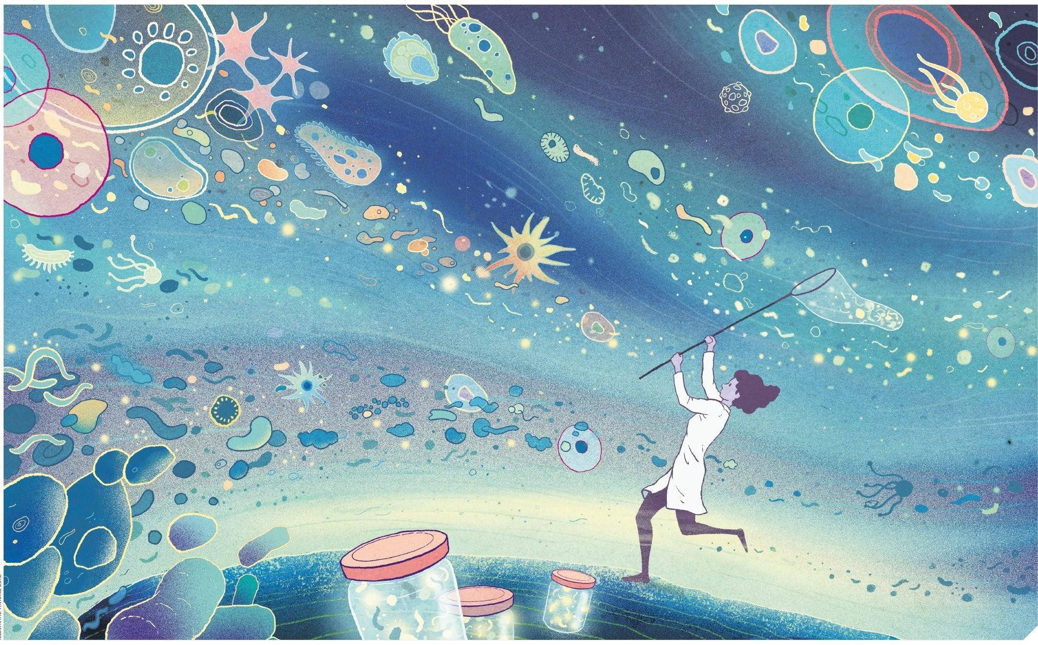 Artikel in bionieuws: De gemene deler van microbiomen